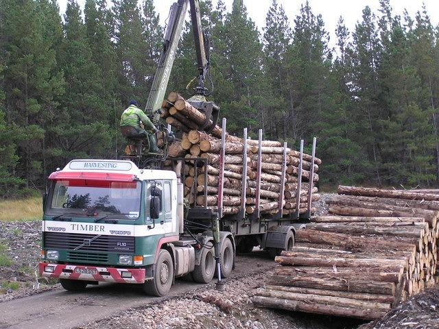 The identified roads are regularly used by timber transport lorries