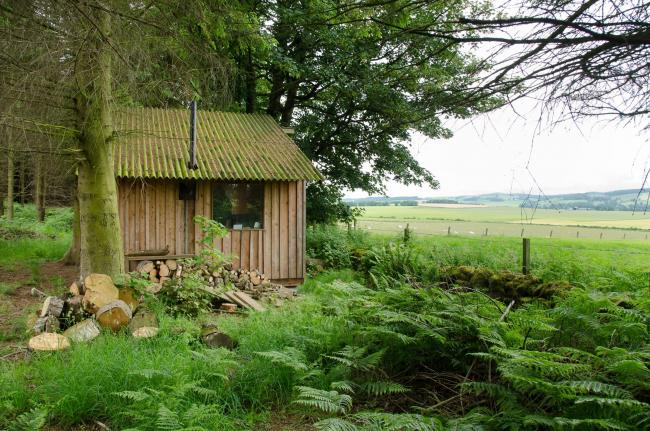 Urban Animation wants to erect 15 huts in the forest near West Linton