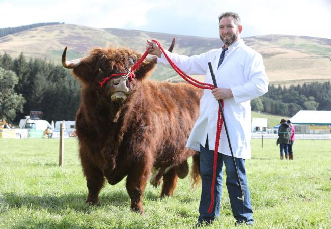 Peebles Show 2019.Gavin Brown from Springfiled wtih won first price in the Bull of any age class.