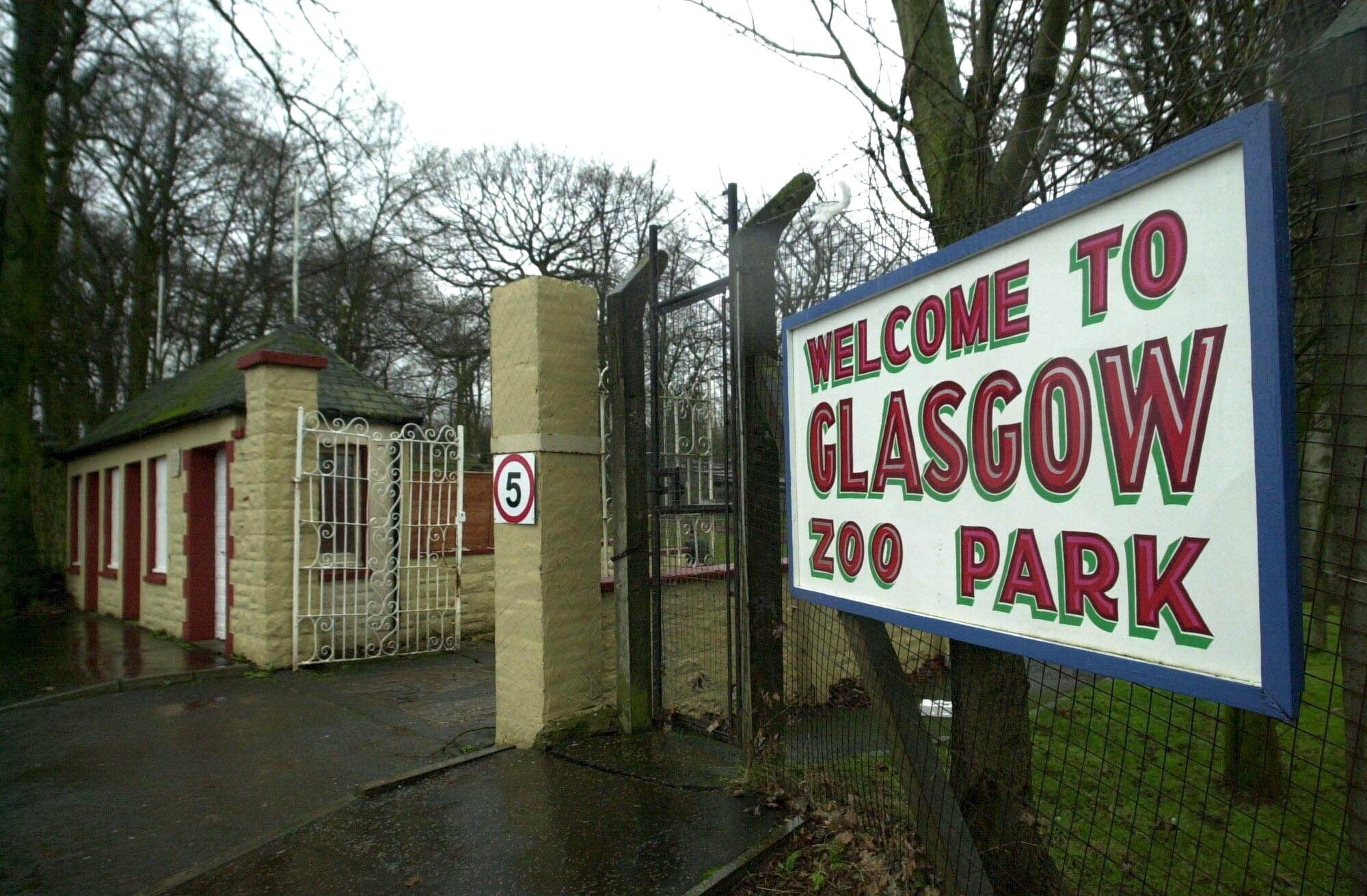 Remember Glasgow Zoo? Here's what it looked like before the redevelopment