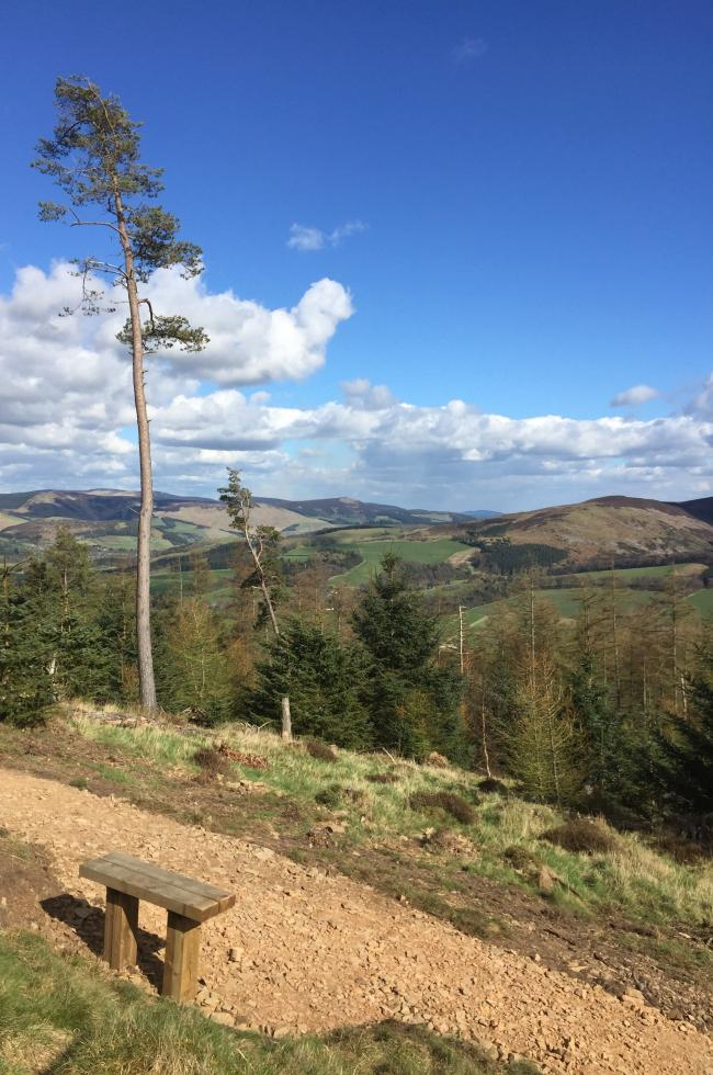 The new trail offers spectacular views of the Tweed Valley and Cademuir