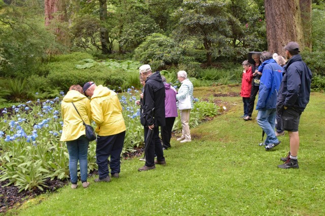 Last weekend's sensory tour at Dawyck